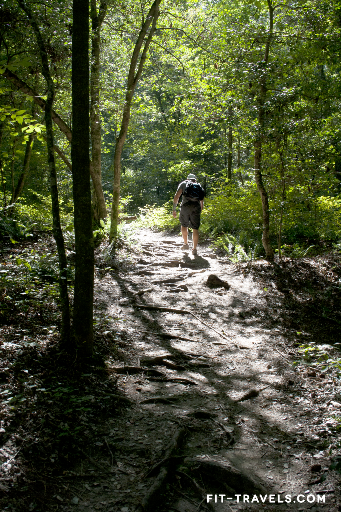 Hiking the Campbell Loop at Raven Rock State Park
