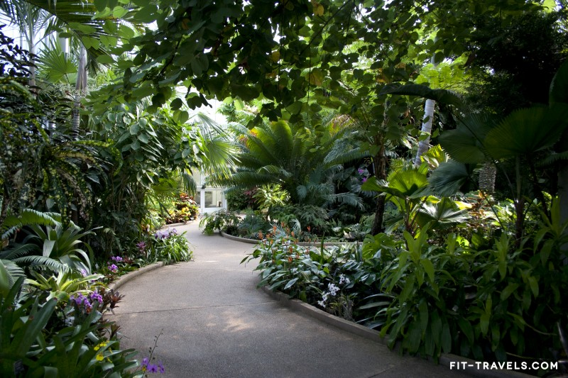 Orchid Conservatory at Daniel Stowe Botanical Garden