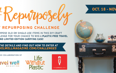 #Repurposely 30-Day DIY Challenge